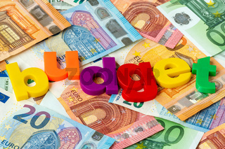 Euro currency and word BUDGET