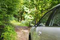 Car on a forest track