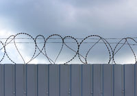 barbed wire fixed with circles on a metallic solid light gray fence.
