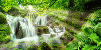 Idyllic forest with waterfalls