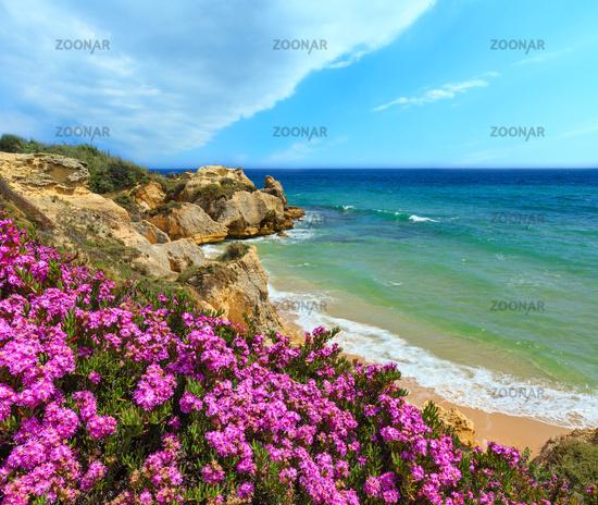 Atlantic blossoming coast view (Algarve, Portugal).