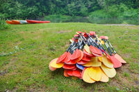 preparing for the Canoeing, the oars from the canoes on the shore