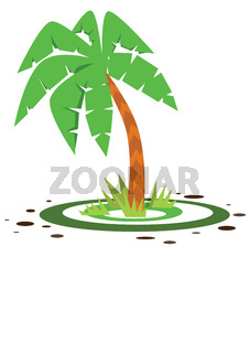 small green palm