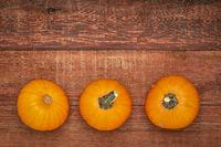 pumpkin goards on rustic wood