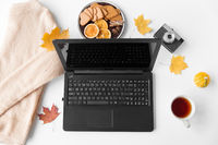laptop, tea, camera, autumn leaves and sweater
