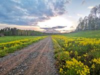Rural ground road