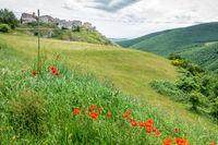 Elcito in Italy Marche