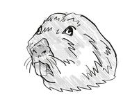 Colonial Tuco Tuco Endangered Wildlife Cartoon Retro Drawing