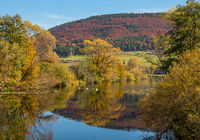 Autumn at the Danube near Geisingen-Gutmadingen