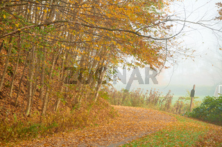 Stowe Recreation Path at autumn foggy day