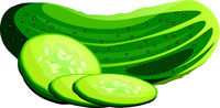 Green cucumber and slices cartoon vegetable vector illustration on white background.