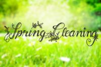 Sunny Spring Meadow, Daisy, Calligraphy Spring Cleaning