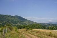 Landschaft Naturpark Pfälzerwald