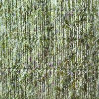 textured roasted sheet Nori of seaweed close up