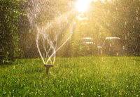 Lawn sprinkler with a lot of copy-space and sun shining