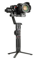 Gimbal stabilizer with camera