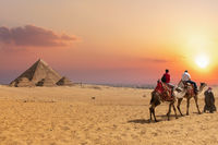The Pyramid complex of Giza and arabs on camels, Egypt