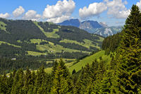 Pre-alpine landscape with pastures and forests in summer, hiking area Megeve, Savoie, France