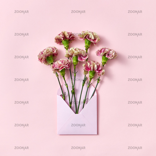 Carnation flowers in an envelope on a pastel pink background.