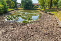 Drying dutch pond in  summer time