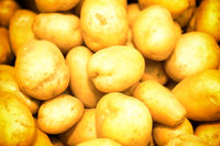 Pile of yellow potatoes at vegetable market