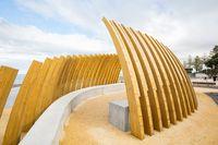 Whale Bone Structure Napier