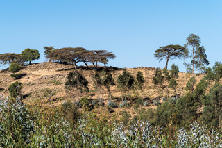 Landscape view between Gondar and the Simien mountains, Ethiopia, Africa
