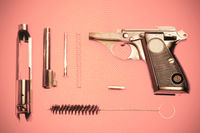 Disassembled pistol and cartridge