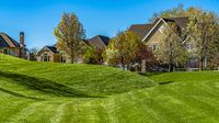 Panorama frame Rich green grasses on a vast terrain with houses and trees in the background