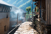 Small village in Nepal