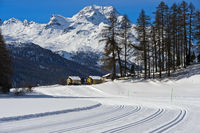 Cross-country skiing trails on the frozen lake Champfersee, Champfer, Engadin valley, Switzerland