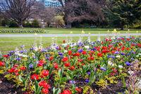 Christchurch Botanic Gardens in New Zealand