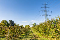 High voltage power lines on a field in summer