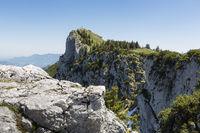 Der Breitenstein in den bayerischen Voralpen im Sommer