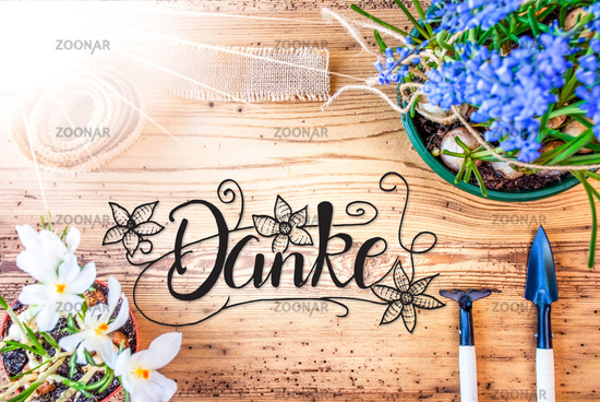 Sunny Spring Flowers, Calligraphy Danke Means Thank You