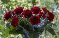 Rosenstrauß (Rosa sp.) mit roten Gerbera