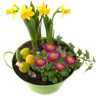 Blumenschale mit Frühlingsblumen und süßer Osterdeko