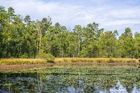 Schwattet Gatt, Naturschutzgebiet