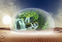 Desert and nature under glass