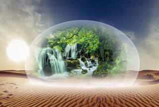 Wüste und Natur unter Glas