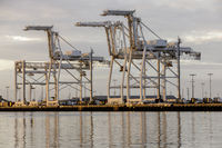 Shipping Container Cranes in the Port of Oakland