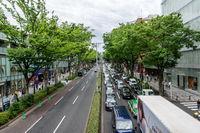 harajuku road view