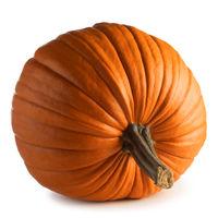 Huge pumpkin on white background