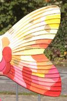tail fin