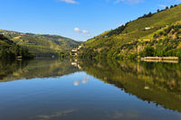 The Douro River near Pinhao, Douro Valley, Portugal