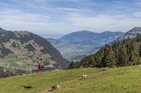 The aerial cableway Gummenalp, Nidwalden, Switzerland, Europe