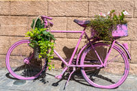 close up of an old bicycle spray painted pink and covered with potted plants and ivy