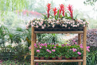 Flowers assortment on a bamboo table