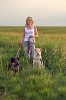 Attractive woman in a field with dogs at sunset