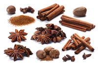 Set of Cinnamon, Badiam, Cloves, Nutmeg, paths